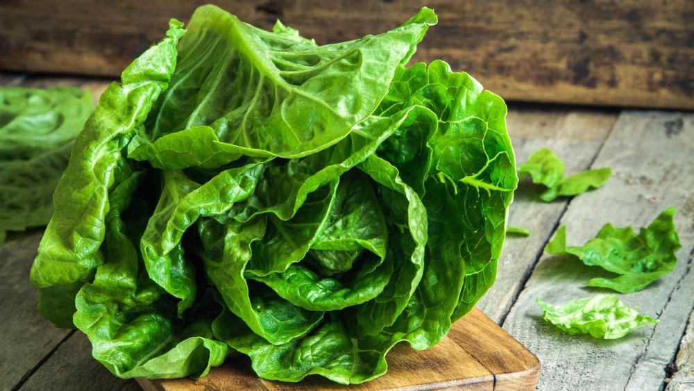 Überschätze Beilage oder supergesund: Welchen Mehrwert Salat im Hinblick auf die Prävention verschiedener Krankheiten bietet sowie eine Auswahl verschiedener Wintersalate.