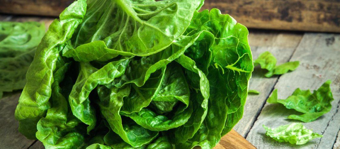 EZ-Bild-Salat